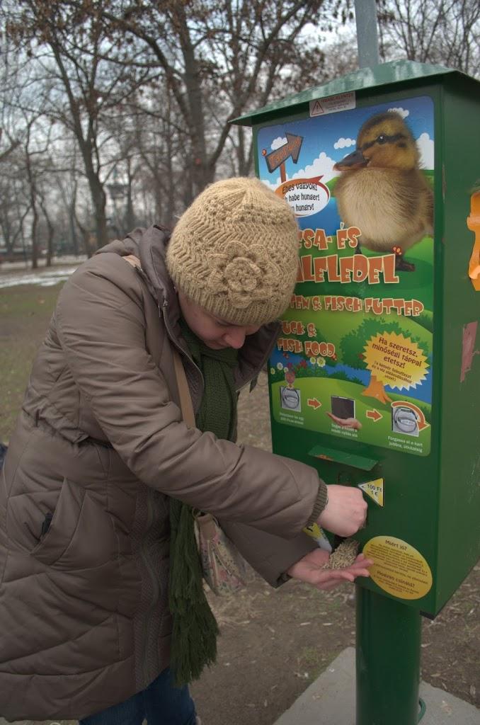 Máquina de venda de comida para patos