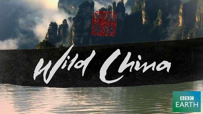 documentário-de-viagem-wild-china