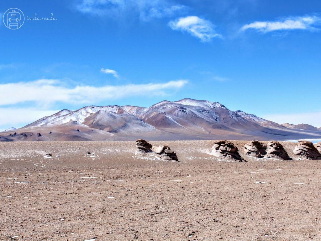 Nossos passeios no Atacama - Salar de Tara