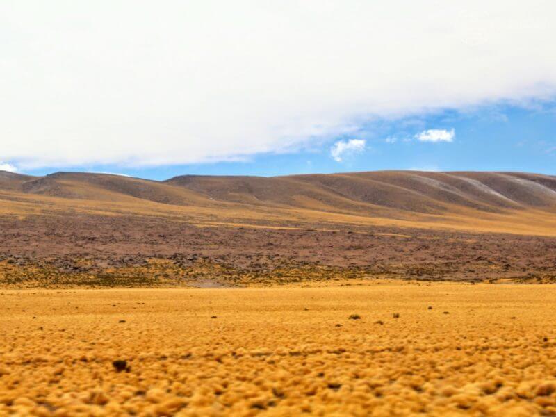 Nossos passeios no atacama - Piedras Rojas e Lagunas Altiplanicas